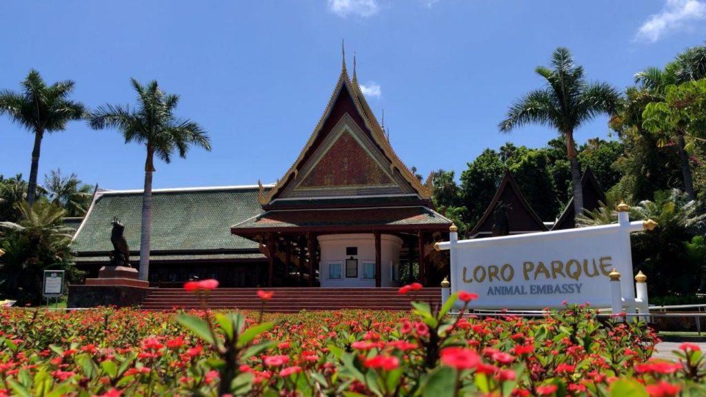 Foto de Loro Parque anuncia su reapertura